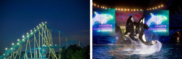 Kraken e Shamu´s Celebration: Light up the Night
