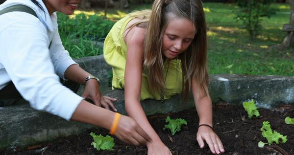 No Soneva Kiri, hotel que defende práticas sustentáveis, as crianças aprendem a plantar