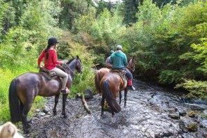 As cavalgadas são uma das atividades mais famosas em Huilo Huilo