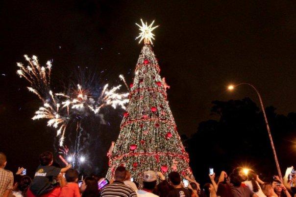 Árvore de Natal Ibirapuera - Divulgação São Paulo Turismo (SPTuris)